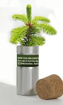 convene-desk-tree-christmas